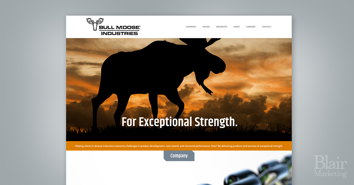 Bull Moose Industries Website